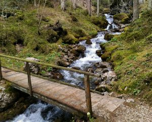 Hike to the Plun mountain, pedestrain bridge over the Carezza-lake river