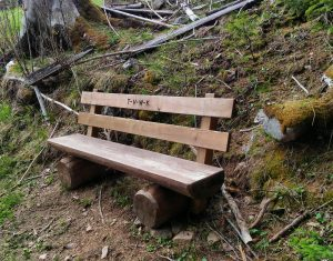 Hike to the Plun mountain, bench in the woods